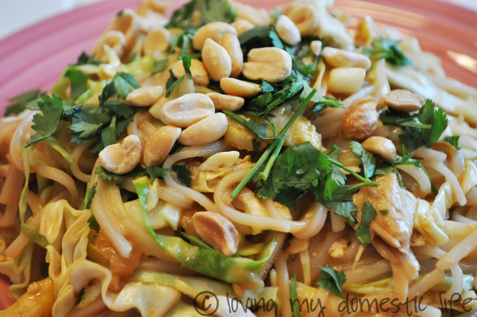 Chicken Pad Thai Recipe — Dishmaps
